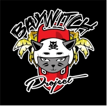 Baywitch Project - Nice Roller Derby. association sportive. Nice