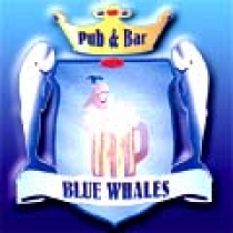 Le Blue Whales. Pub, Brasserie American Bistrot. Vieux-Nice